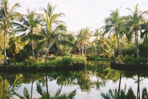 Kona Village Resort in 2004